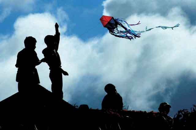 kites-kids-flying-kites-hz.jpg